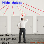 Quick Guide to Choose a Perfect Niche for websites