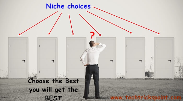 How to choose Profitable Niche